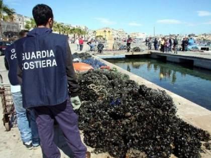 Cozze contaminate dalla salmonella: è allarme a Napoli