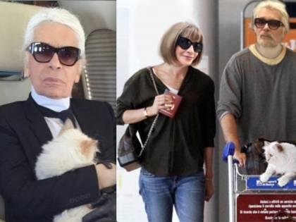 L'eredità di Karl Lagerfeld? In parte alla sua gatta Choupette