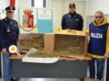 Quattro chili di canapa indiana, arrestato 25enne