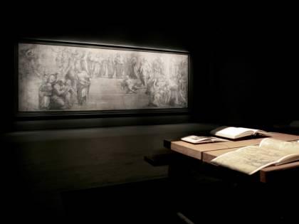 Raffaello, il cartone restaurato ritorna a splendere alla Pinacoteca Ambrosiana di Milano