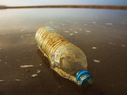 Plastica nei mari italiani, la denuncia di Ispra: nei fondali più del 70% dei rifiuti