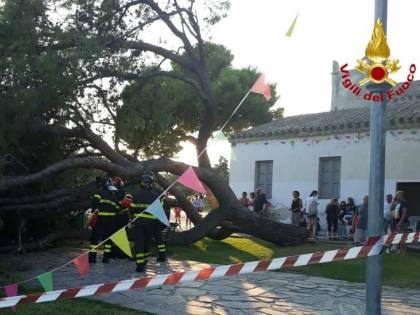 Cagliari, cade un pino sui bambini durante una festa di compleanno