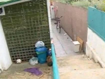 Chieti, accoltellata da stalker, donna viene salvata dal suo cane