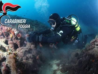 Isole Tremiti, trovati reperti di origine Etrusca