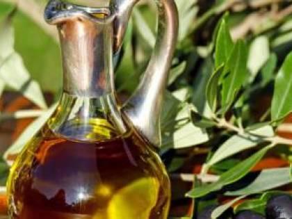 Xylella, si contano i danni: giù la produzione di olio pugliese