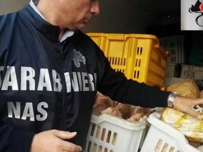 Mancano le condizioni igienico sanitarie, i Nas chiudono una mensa scolastica a Messina