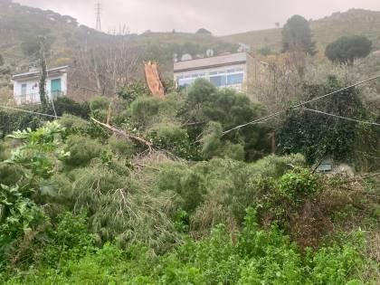 Notte da incubo in Sicilia: il vento spazza via tutto