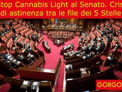 La satira del giorno: stop alla cannabis light
