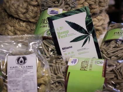 La cannabis ora arriva anche a tavola: dai biscotti all'olio, ecco i prodotti
