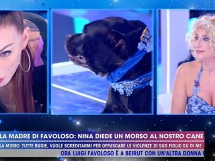 """Hai morso il mio cane"". Ma Nina Moric smentisce"