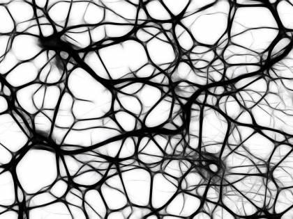 """Morbo di Parkinson, scoperta la """"coppia molecole"""" che rallenta la malattia"""