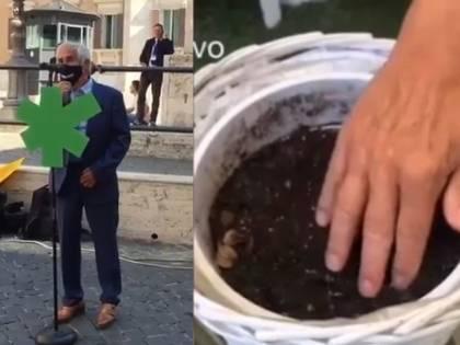 """La campagna giallorossa: """"Legalizzate la cannabis Noi la coltiviamo a casa"""""""