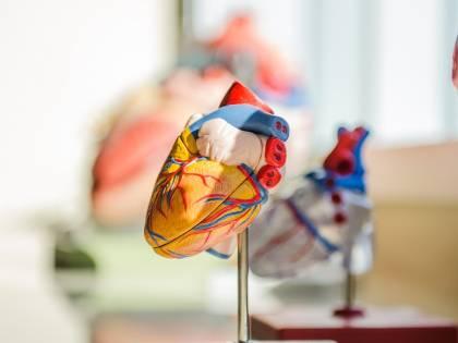 Bristol Myers Squibb, con MyoKardia franchise cardiovascolare più forte