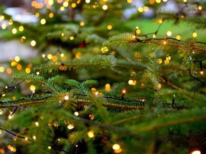 Dalle luci di Natale alle pentole Così si abbatte la super bolletta