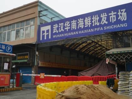 """Wuhan, dove tutto ebbe inizio: cosa è """"successo"""" nel mercato"""