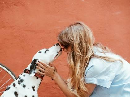 """La """"realtà aumentata"""" ci fa capire di più i cani"""