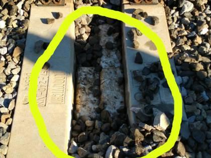 La centrale dello spaccio in pineta: droga nascosta sotto le traversine della ferrovia. Sei arresti a Viareggio