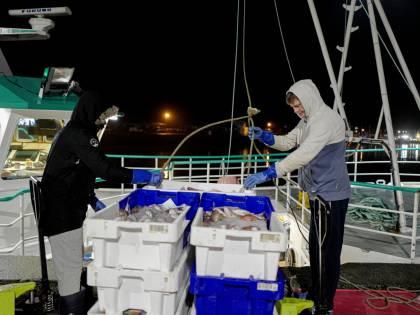 Si scioglie il nodo sulla pesca. La Brexit è (quasi) cosa fatta