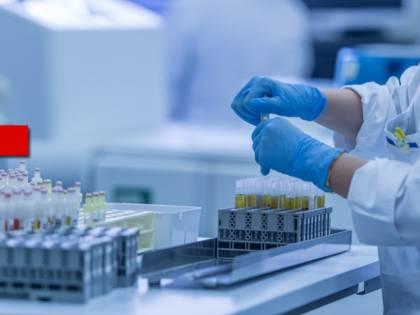 Gli anticorpi monoclonali: svolta per i malati Covid-19?