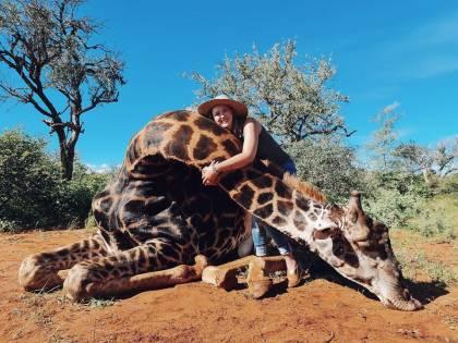 """Cacciatrice uccide giraffa e regala il cuore dell'animale al marito: """"È per San Valentino"""""""