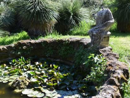 Milano e Roma, due luoghi all'aperto in cui andare ora: l'Orto Botanico di Brera e l'Orto Botanico di Roma (e la fontana più antica di Milano)