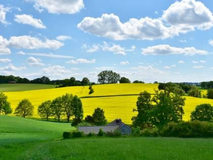 """I """"conservatori verdi"""" tra campagna e agricoltura"""