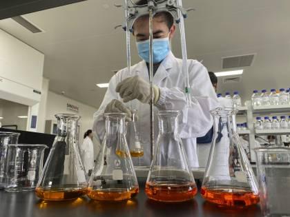 Perché il coronavirus di Wuhan non è l'originale