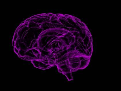 """""""Nel nostro cervello c'è una farmacia nascosta"""""""