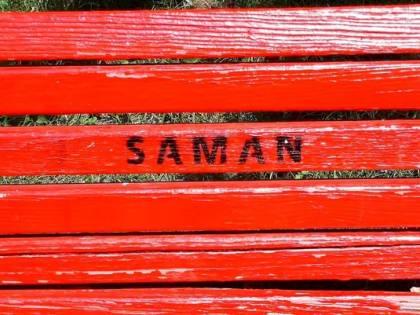 """Nel silenzio delle femministe il nome """"Saman"""" su una panchina"""