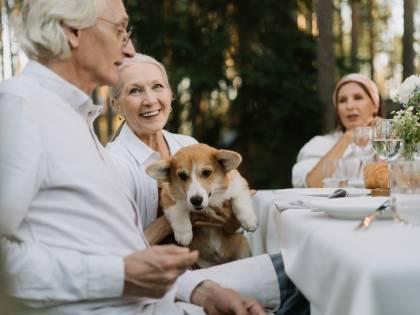 Animali per over 60: i 5 migliori