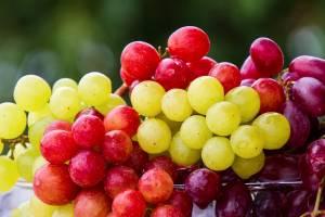 Tutti i benefici dell'uva: il frutto dell'autunno complice del benessere