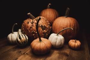 Zucca in autunno, i benefici e le ricette per i nipoti