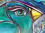 Ritratto di free..bird..