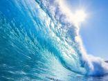 Ritratto di Tsunami Tour..