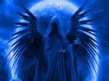 Ritratto di Dark Angel