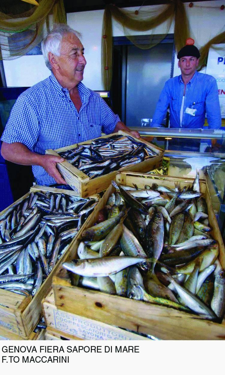 Genova per tre giorni capitale del gusto e del «pesce ritrovato»