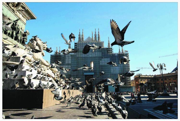 «In piazza Duomo solo eventi griffati»