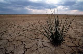 Europa e Italia a rischio siccità