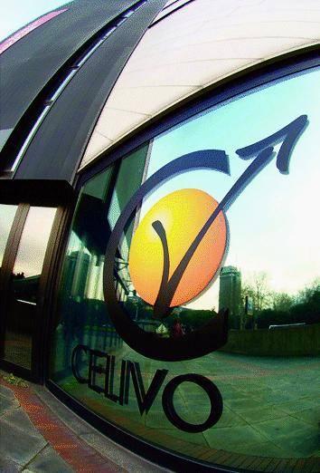 Sette nuovi uffici per il Celivo
