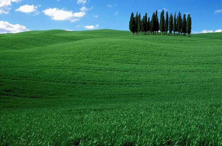 Benvenuti in Toscana dove anche gli stranieri si sentono a casa
