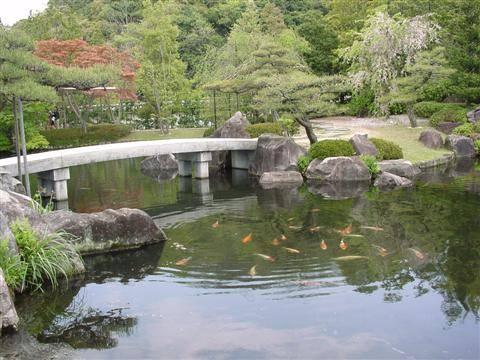Giappone, cinque cadaveri  in un'auto. Forse suicidio  di massa preparato via web