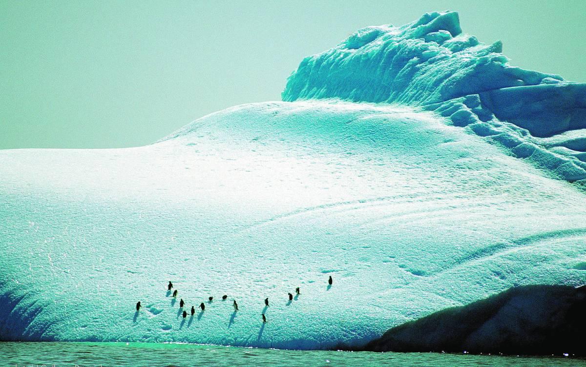 «Troppa disinformazione sul riscaldamento globale»