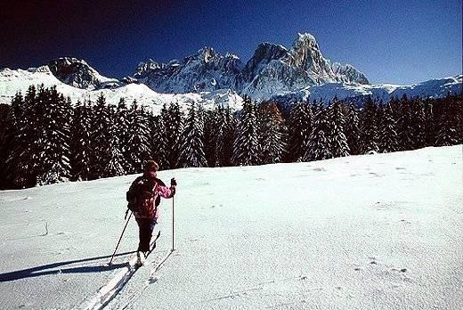 Trentino: scoprire la natura anche d'inverno