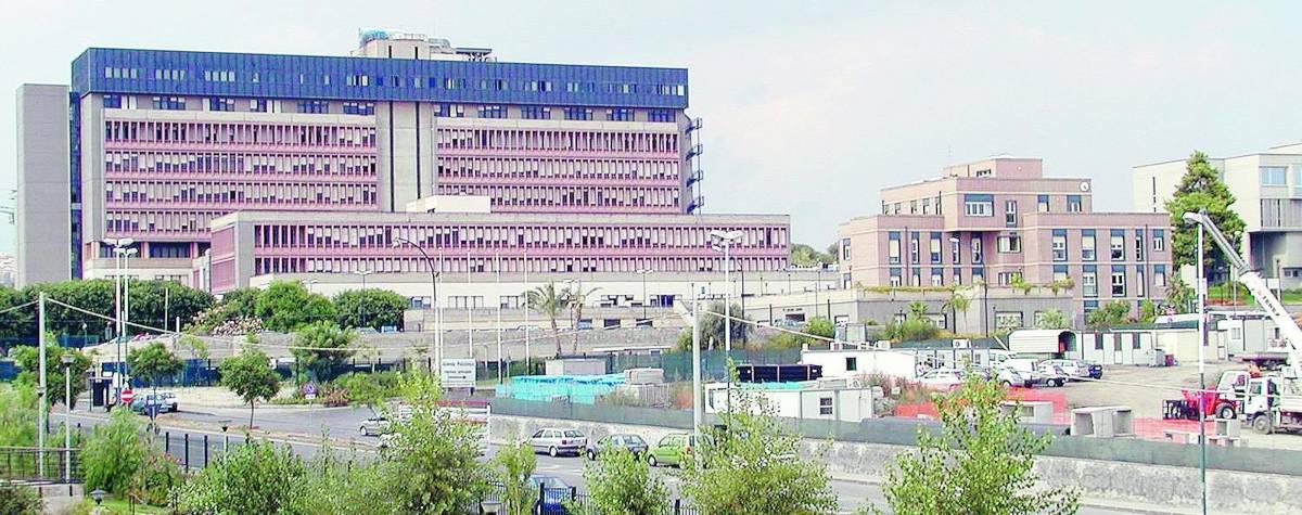 Quattro neonati morti in 72 ore Allarme virus all'ospedale