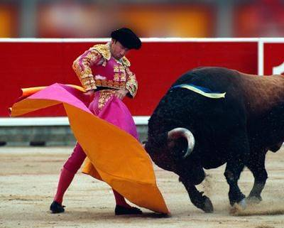 In Spagna la crisi uccide la corrida