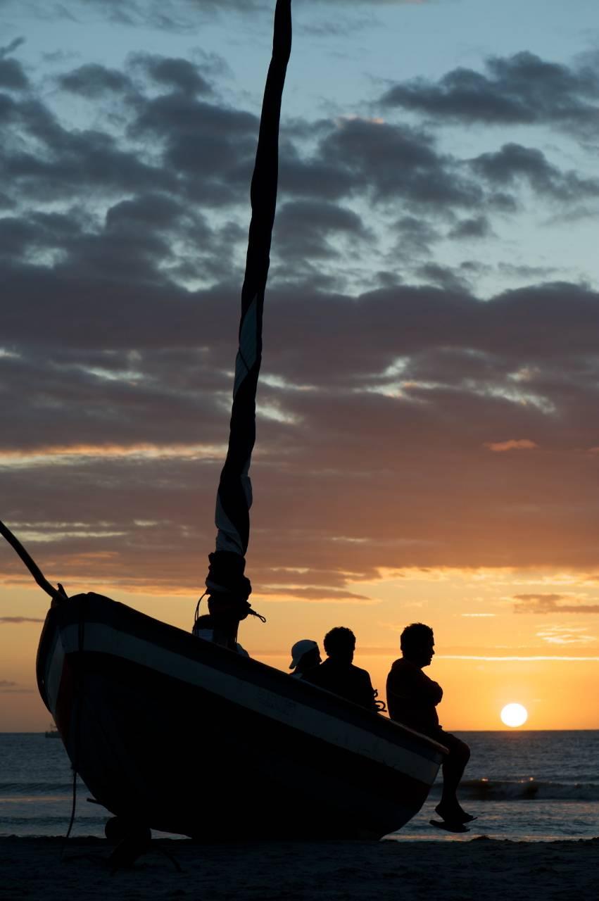 La migrazione dei Guarà  sul delta di Paraiba