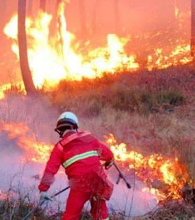 Incendi e paura in Liguria, Versilia e Campania