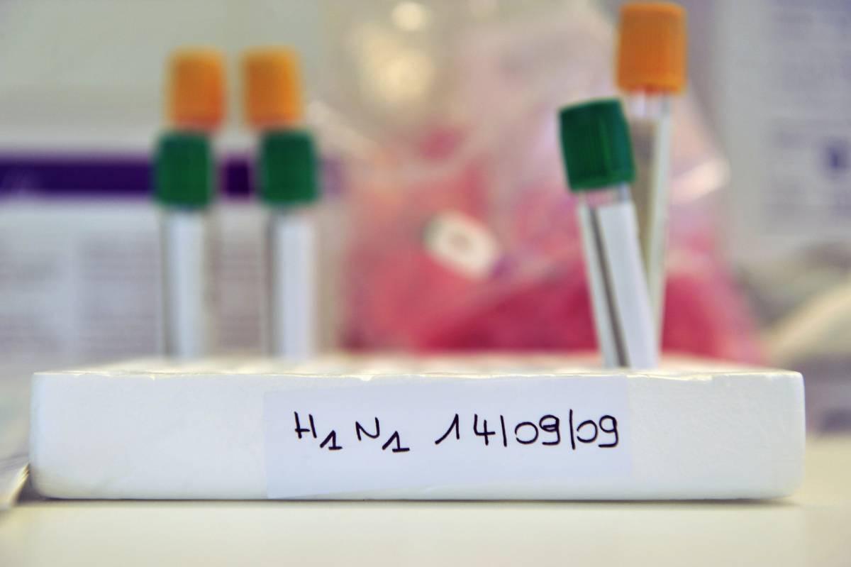 Virus A: fra un mese il vaccino