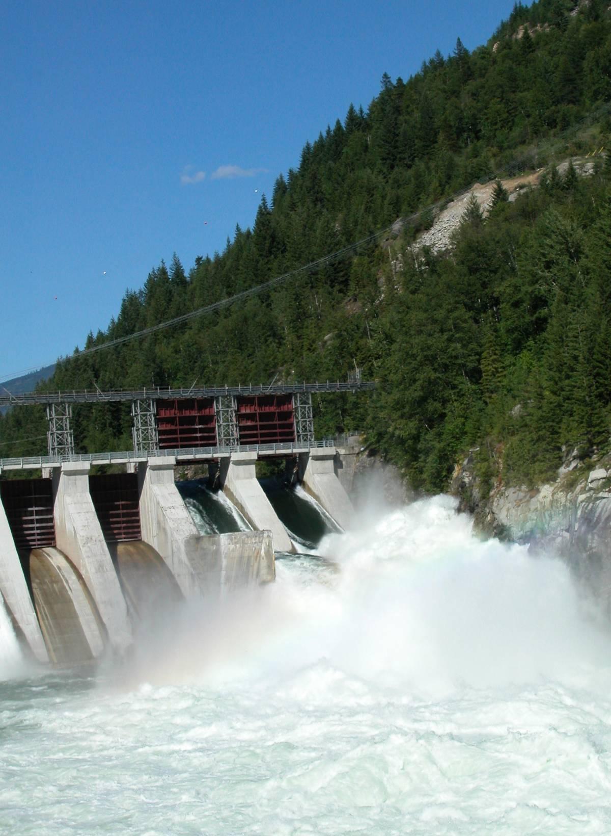 Valtellina, premiato il Carroccio per la difesa dei corsi d'acqua