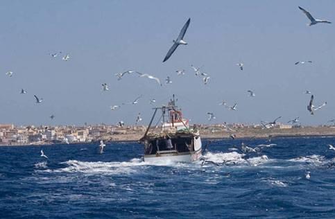 Libia, sequestrati tre motopesca